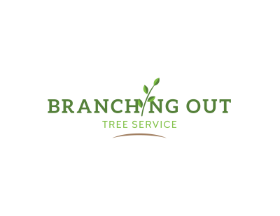 Branching Out Services full color logo